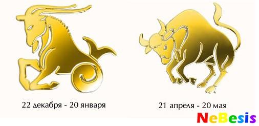 seksualnaya-sovmestimost-rak-zhenshina-i-muzhchina-kozerog